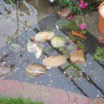 Schotterbeet geflutet