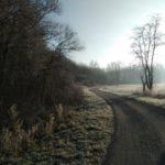 Auf dem Radweg