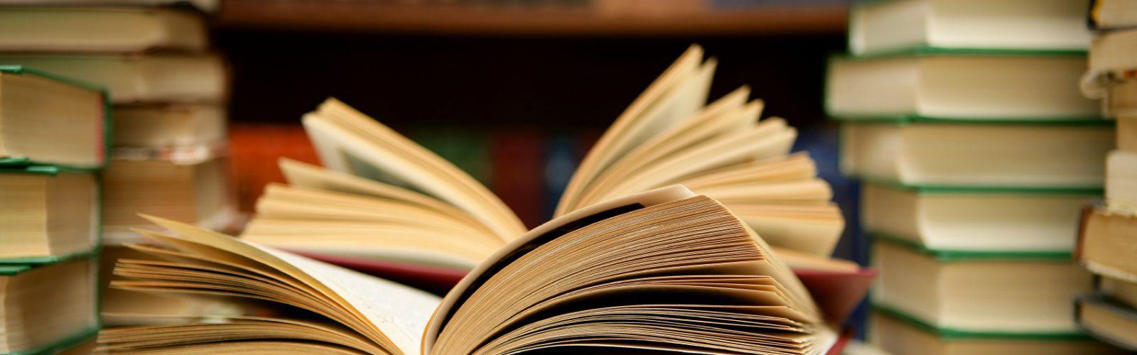 Aufmacher Literatur